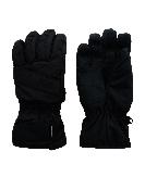 Afbeelding Ziener V2 Ski Handschoenen Heren
