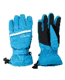 Afbeelding Dare 2b Salute Ski Handschoenen Dames