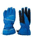 Afbeelding Dare 2b Hands Down Ski Handschoenen Heren